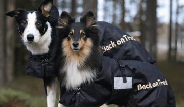 Pláštěnka, nebo obleček – parťák pro podzimní počasí